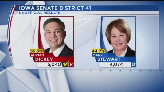 Dickey Defeats Stewart in House District 41 Special Election