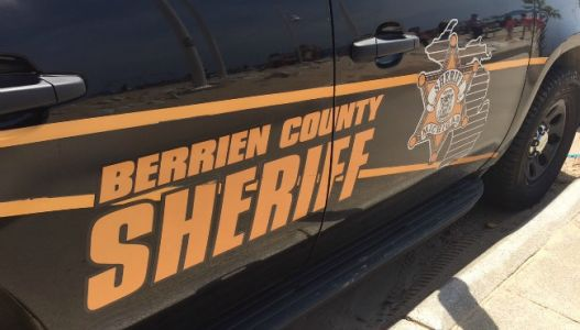 Man who fell into Berrien County lake rescued
