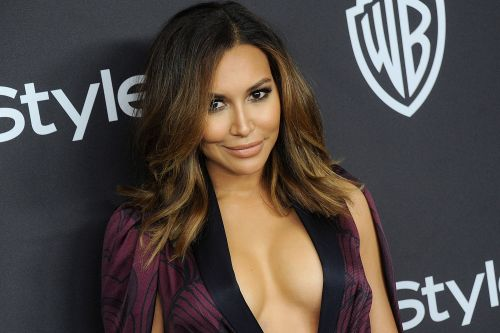 Naya Rivera search should be handled by the authorities: cops