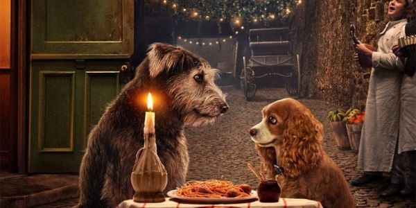 Meet Lady & The Tramp's Rescue Dog Stars In Adorable Video
