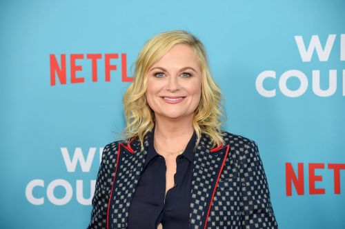 Amy Poehler Doesn't Share Photos of Her 2 Sons, but Here's What We Do Know About Archie and Abel