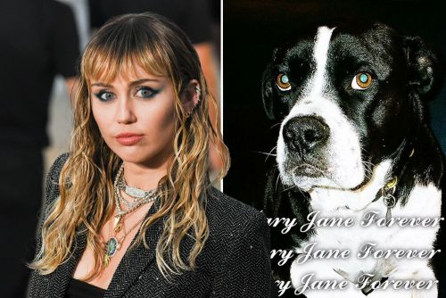 Miley Cyrus mourns the death of her dog Mary Jane