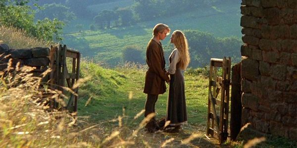 You Know, A Princess Bride Remake Actually Isn't A Terrible Idea