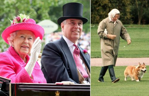 Prince Andrew gifted Queen Elizabeth puppies while she 'felt down and alone'