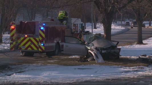 Driver in Critical Condition After Car Crashes Into Tree Along Prospect Road