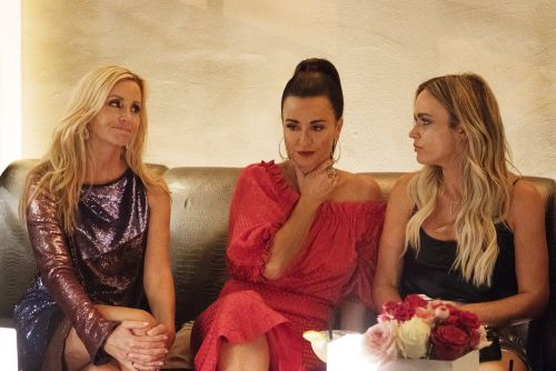 "Camille Grammer Calls Teddi Mellencamp Arroyave's Accountability Business ""Suspect""; Kyle Richards Comes To Teddi's Defense"