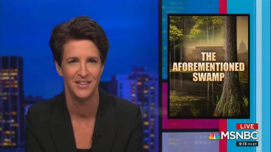 MSNBC, Fox Score Ratings Wins Wednesday: Rachel Maddow, MSNBC Were Most Watched, Fox Wins Demo in Total Day