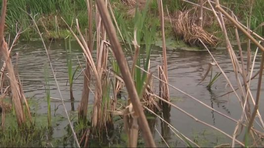 EPA plans another rewrite of WOTUS rules